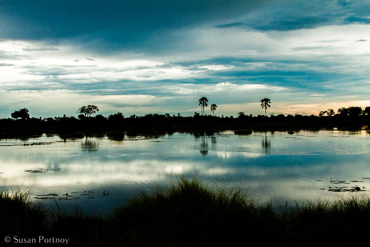 Stunning Silhouette Photos Guaranteed to Inspire Your Travels-An ice-blue sunrise at Abu Camp in Botswana.