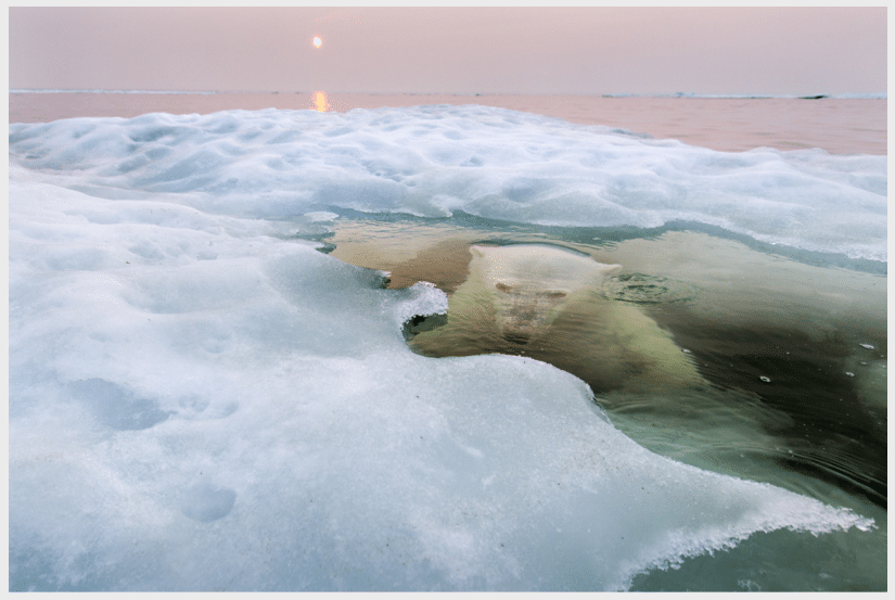 Photos I Wish I Had Taken: Paul Souders
