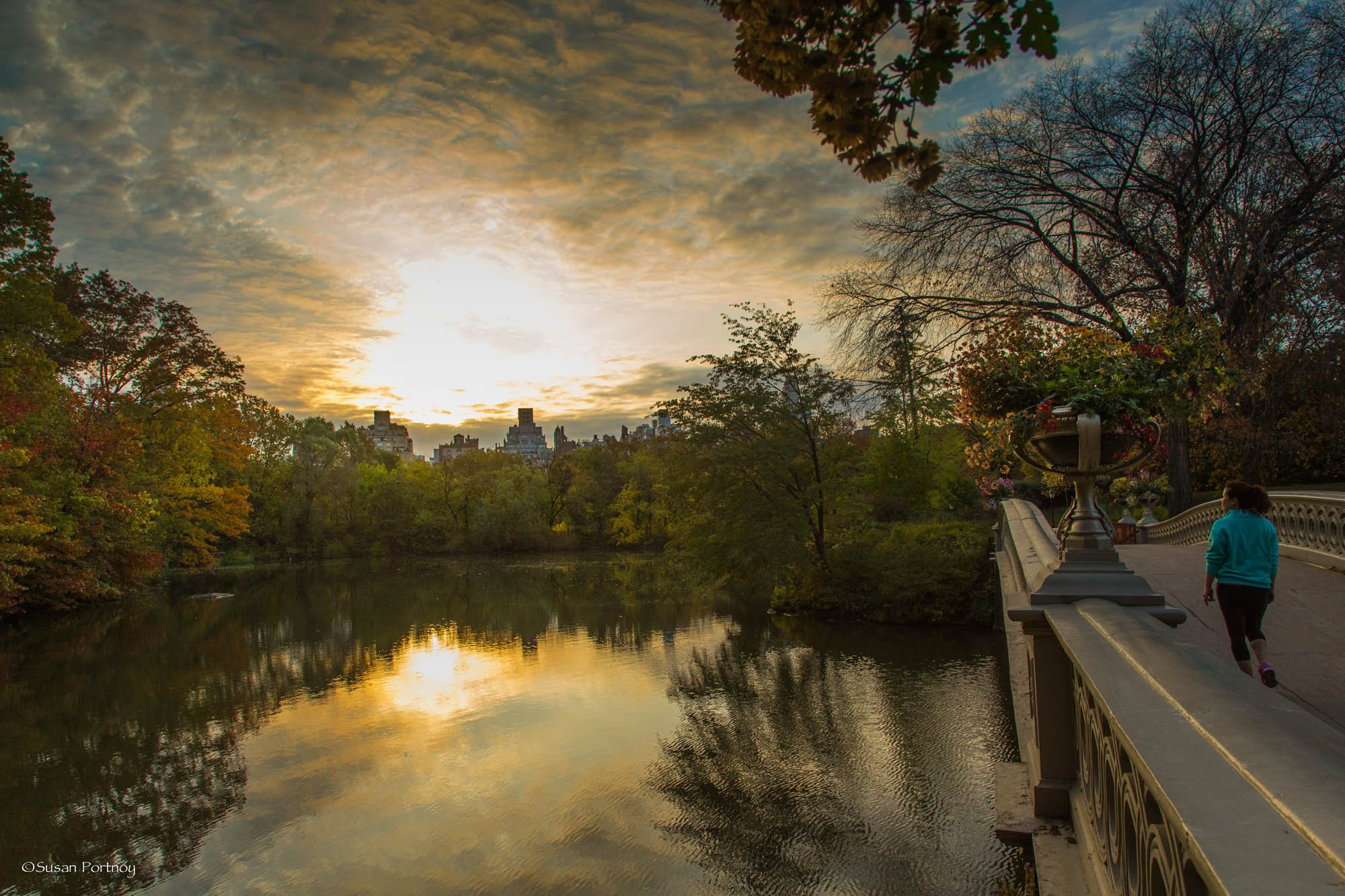 A view of the Ramble from the north side of Bow Bridge, Central Park, NYC