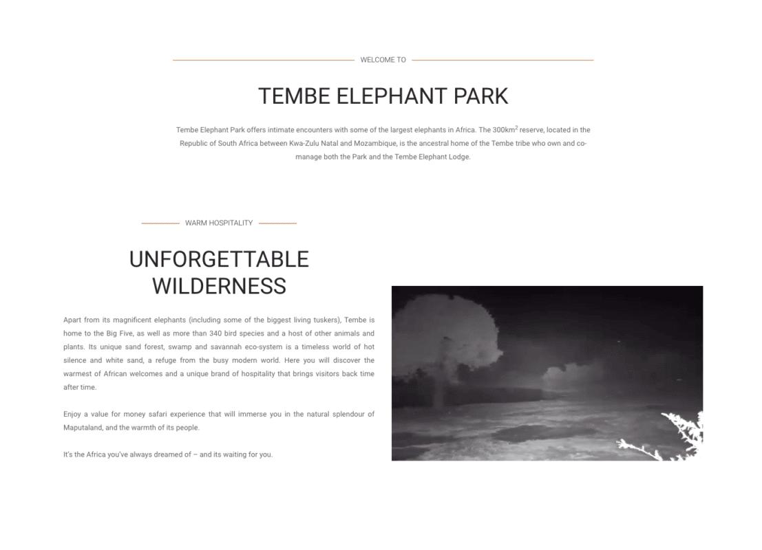Tembe Elephant park live cam