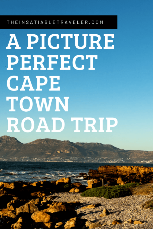 A picture perfect cape town road trip