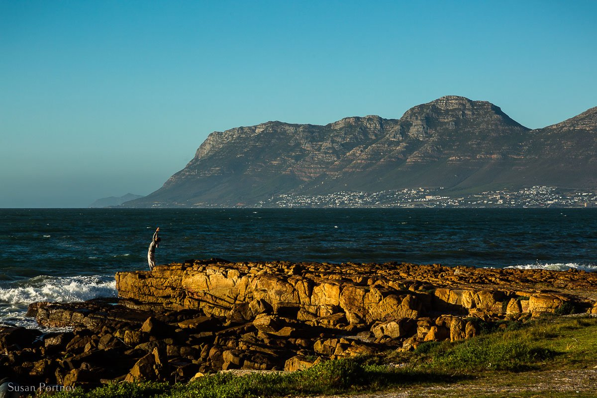 A picture of a man in a yoga pose on rocks at the water's edge near Kalk Bay
