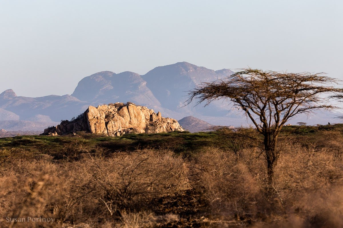 Samburuland landscape in northern Kenya - Kenya Wildlife Safari_-023001