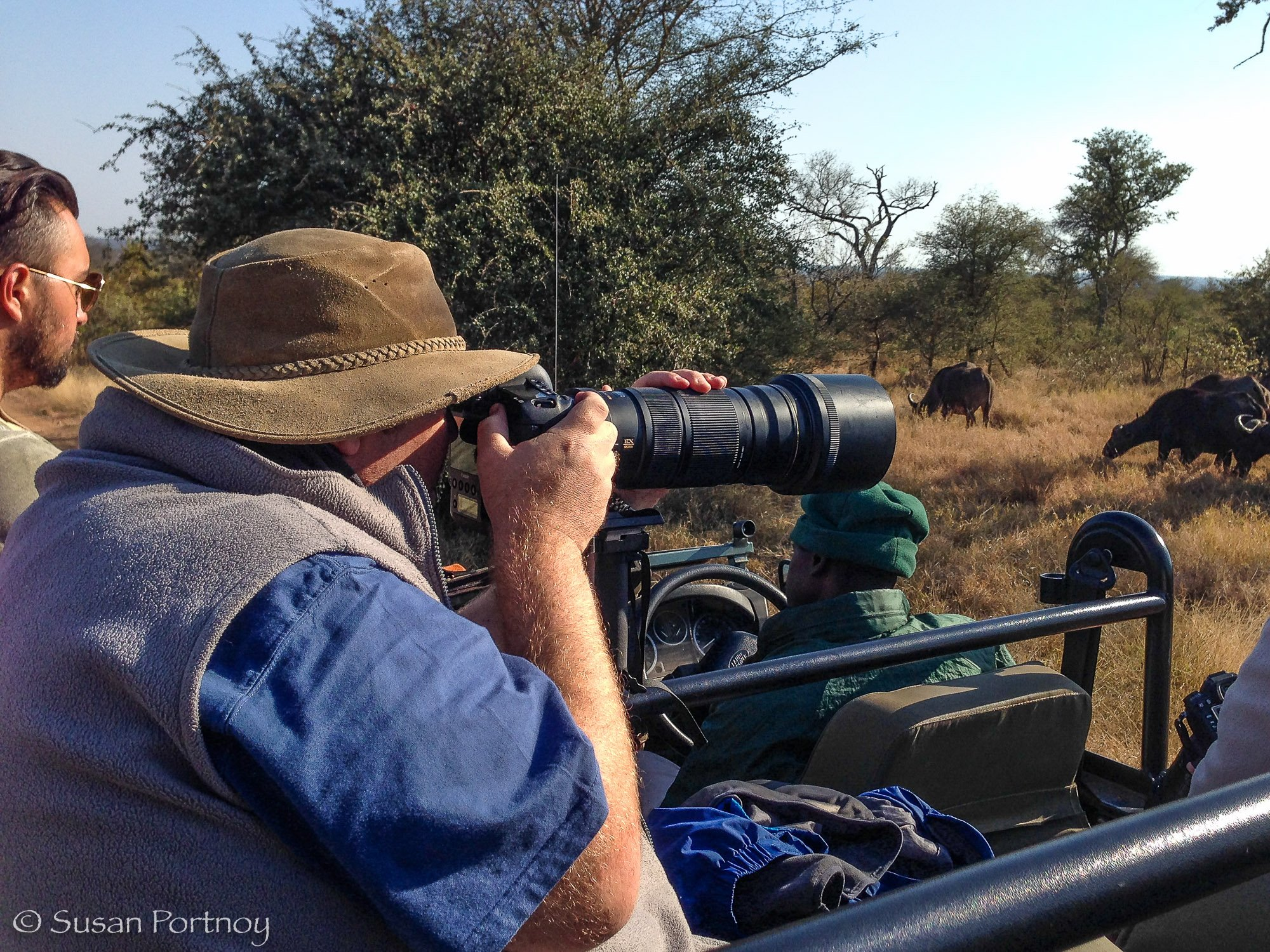 Large man photographing buffalo from a jeep during a travel photography tour