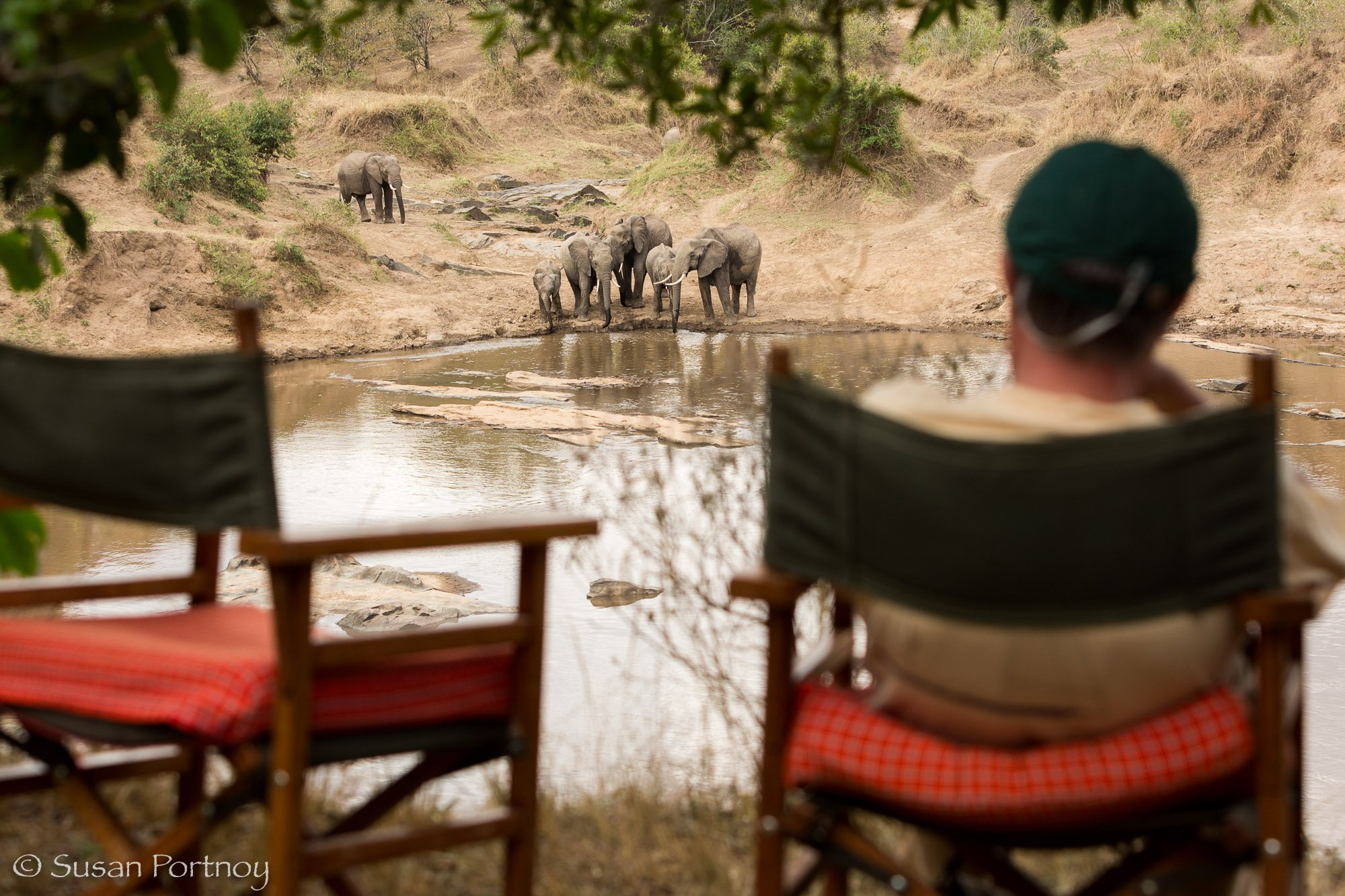 A man watching Elephants drinking water in the Mara River taken during a travel photography tour in Kenya