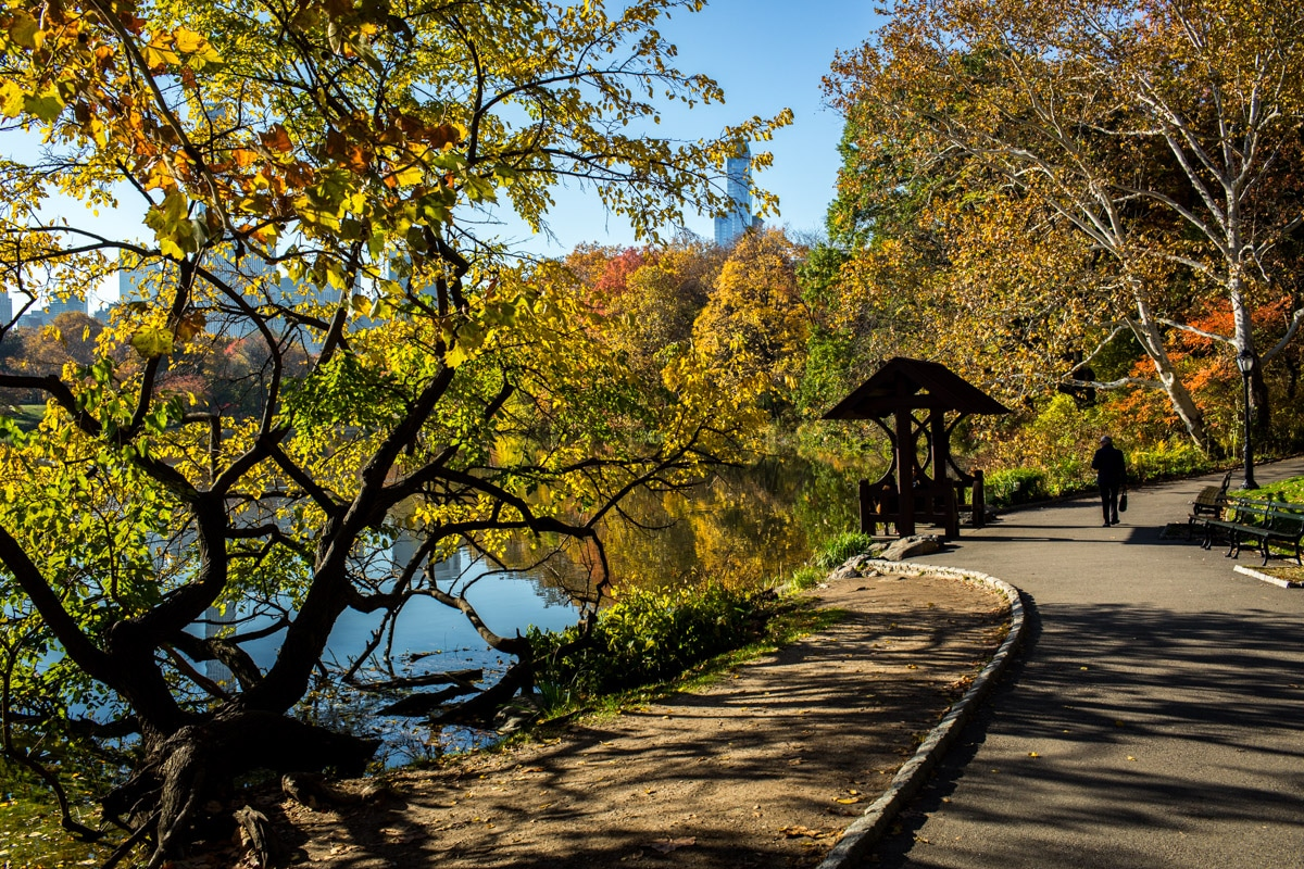 Best Places to see Fall Colors in Central Park