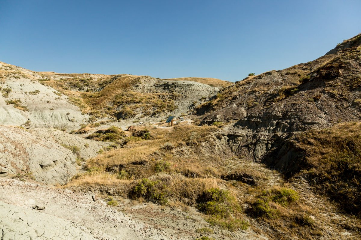 Wendy on hill, Finding Fossils with Wendy Sloboda- The Badland's Badass Dinosaur Hunter, Devil's Coulee, Alberta, CA-5528