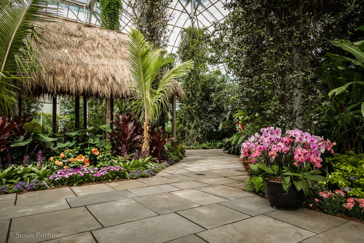 Hawaiian Paradise Garden in the Enid Haupt Conservatory--Spend a Perfect Day at the New York Botanical Garden-165920180515