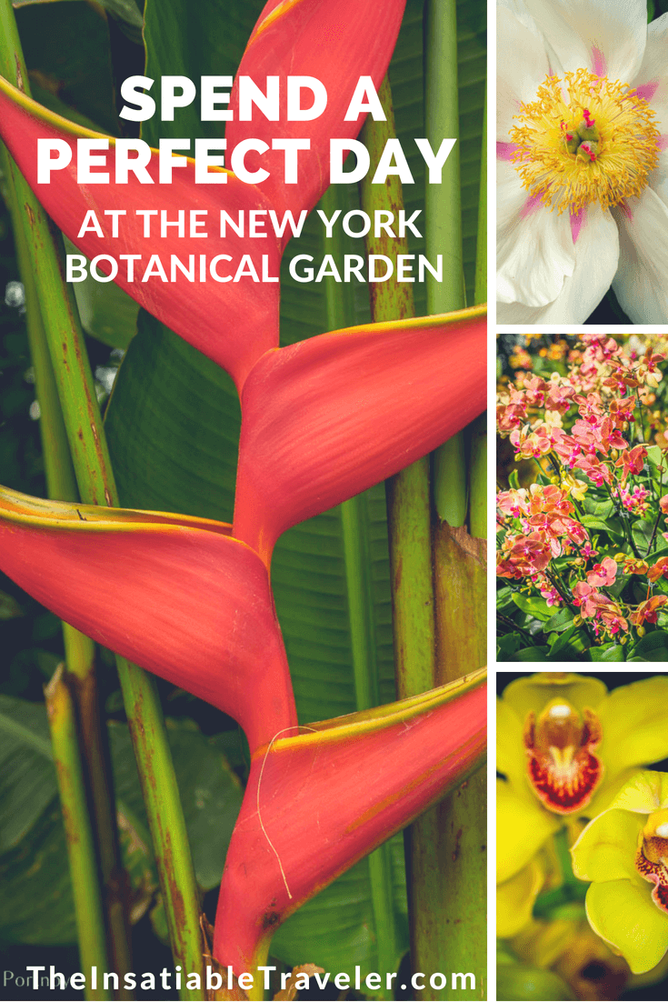 Spend a Perfect Day_ With lush greenery, spectacular flowers, intriguing exhibits and exciting family-friendly programs and activities, the New York Botanical Garden is a perfect escape. #NewYork _ #Flowers _ #Daytrip _ #Family _ #Weeken.png