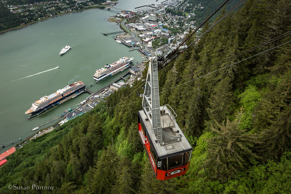 A view of the Mt. Robert's Tram from the summit in Juneau with the Westerdam below. - Lessons Learned on an Alaskan Cruise -459820180607