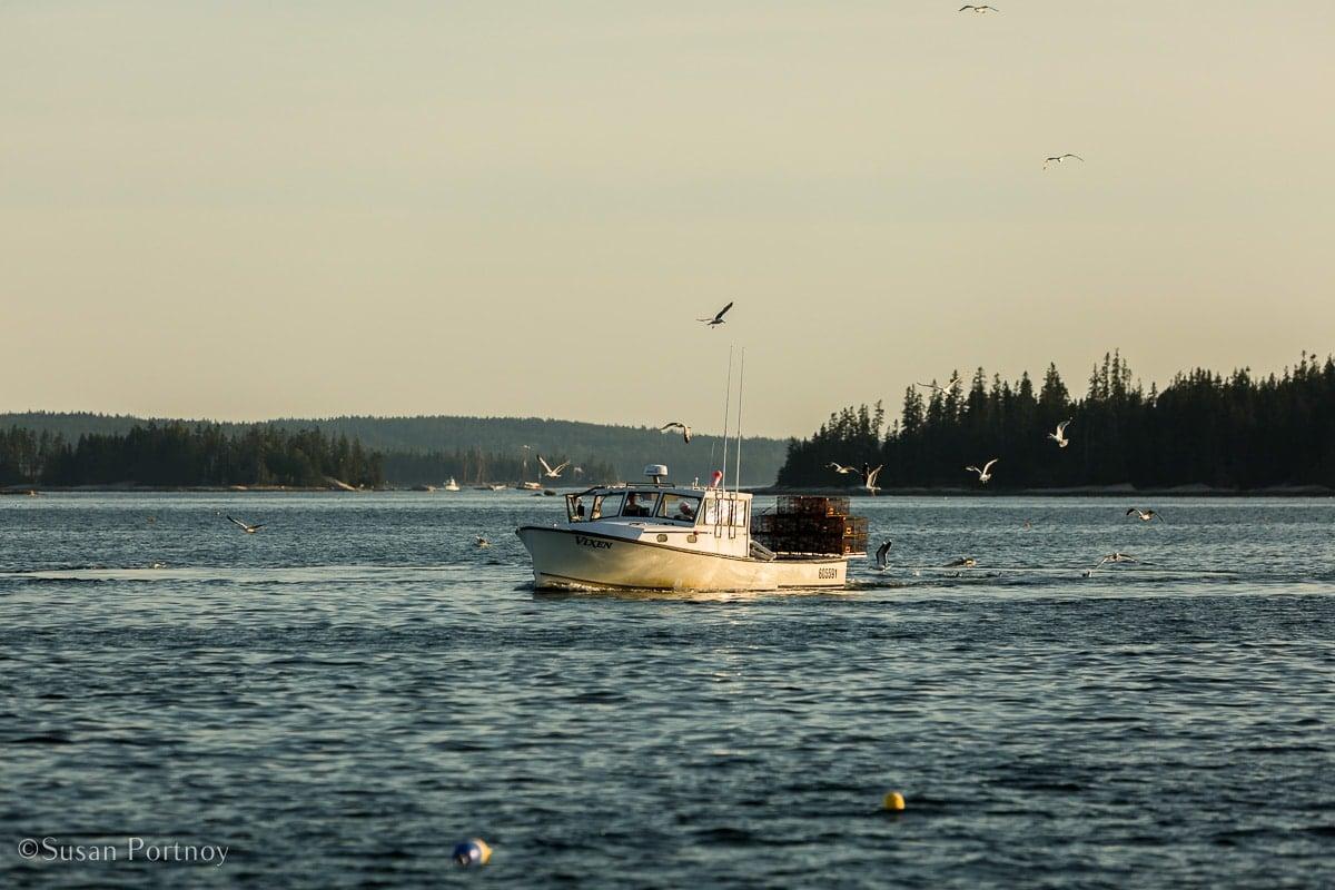 Windjammer cruise in Maine-658320180705