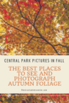 Central Park in Fall. If you're in NYC and want some gorgeous autumn views, check out my favorite places to see and take photos of Central Park in the Fall. Plus there's a handy-dandy interactive map. Plus, there's a handy-dandy interactive map. #CentralParkPhotography #CentralParkFall #CentralParkAutumnPhotography #CentralParkAutumnleaves #newyorkcitycentralparkphotography