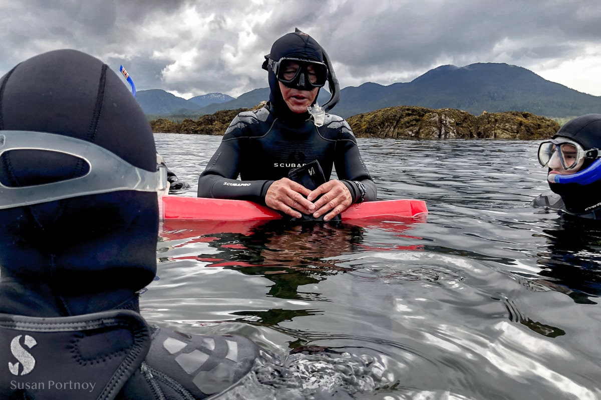 Scuba Diver in the water in Ketchikan Alaska - Holland Amercia Alaska Cruise