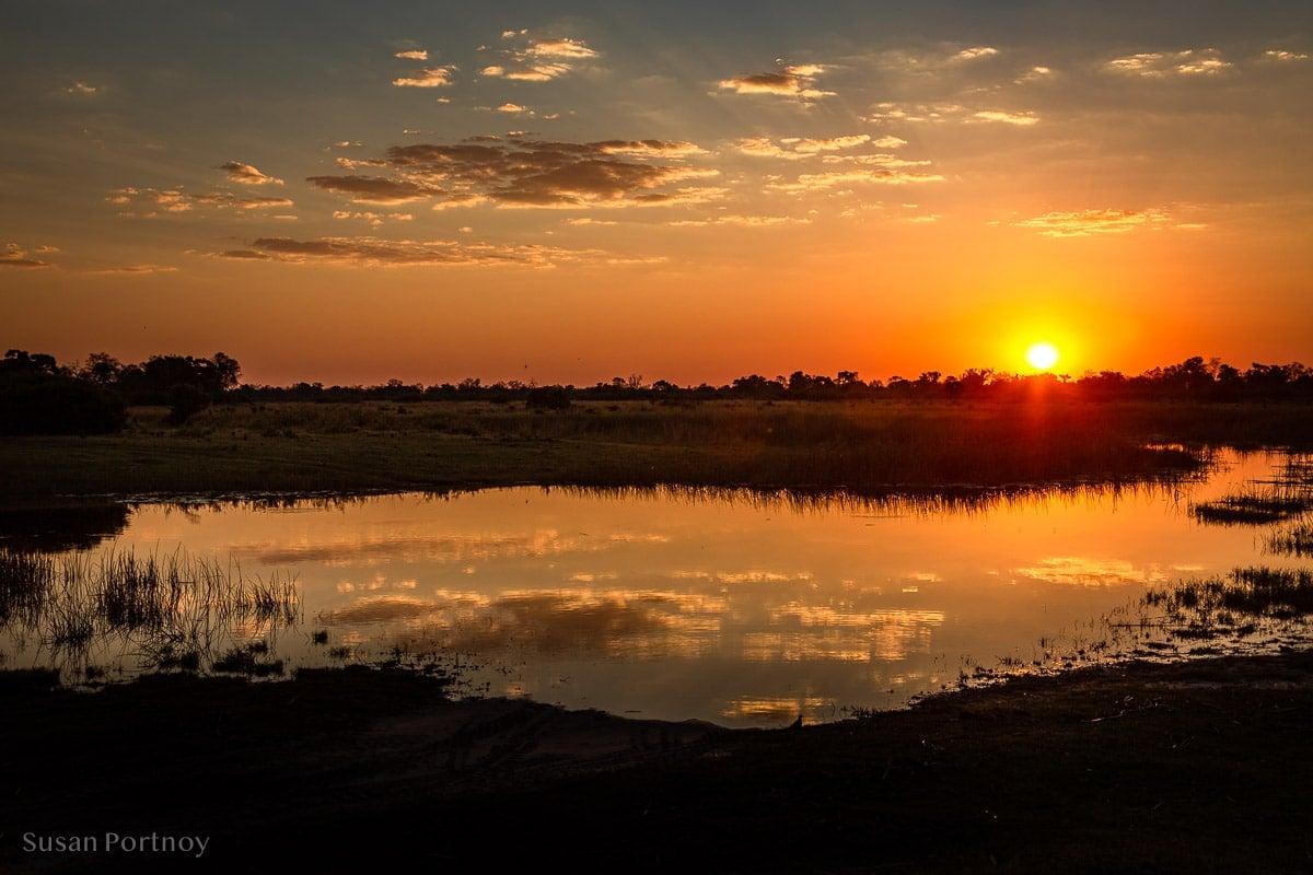 Beautiful sunset reflecting in a watering hole during a Botswana Safari
