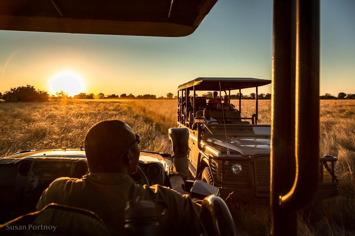 Two jeeps coming toward each other at sunset in Botswana