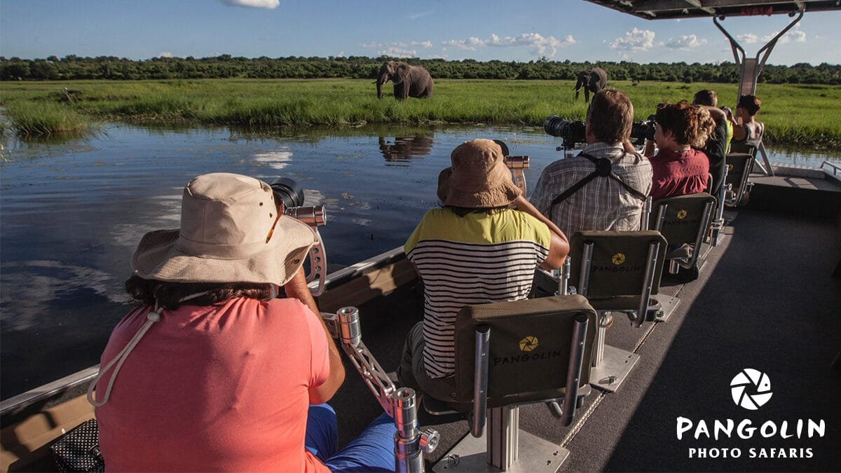 Guests on a boat in Chobe, Botswana taking pictures.  Photo credit: Pangolin Photo Safaris -one of 10 great Photographic Safaris in Africa