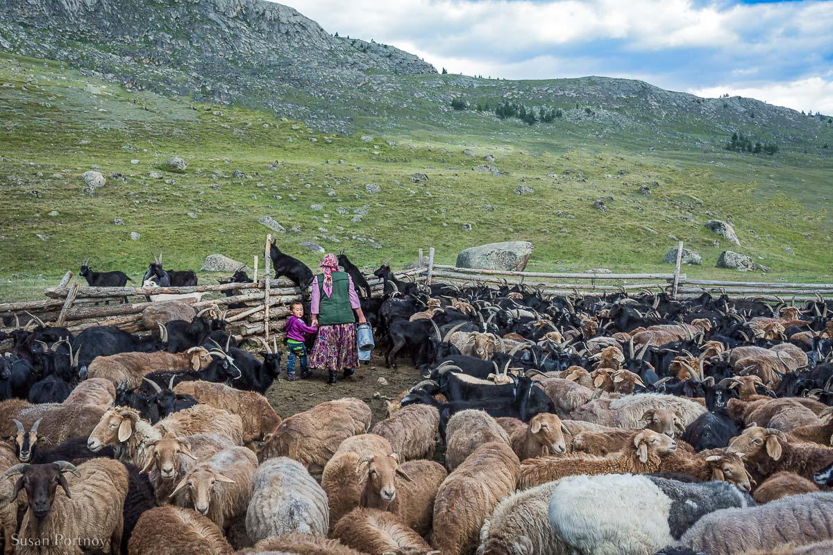 Kazakh-woman and little boy in goats pen-in-mongolia