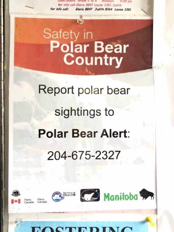 The Polar Bear Alert program phone number