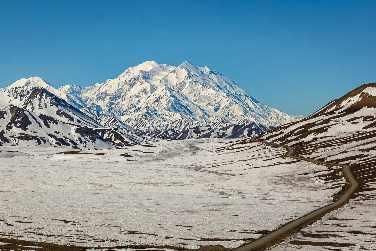 A snow-covered Mount Denali against a cloudless blue sky