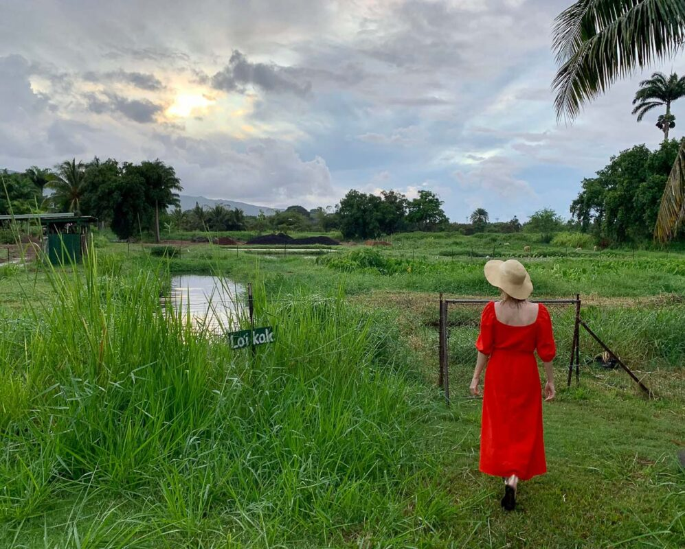View of a woman in a red dress with a wide-brimmed hat walking on a lush farmNa Mea Kupono . One of many cool things to do in Hawaii