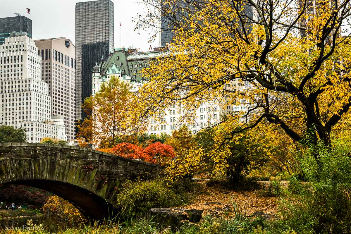 Gapstow Bridge and Fifth Avenue skyscrapers from Central Park