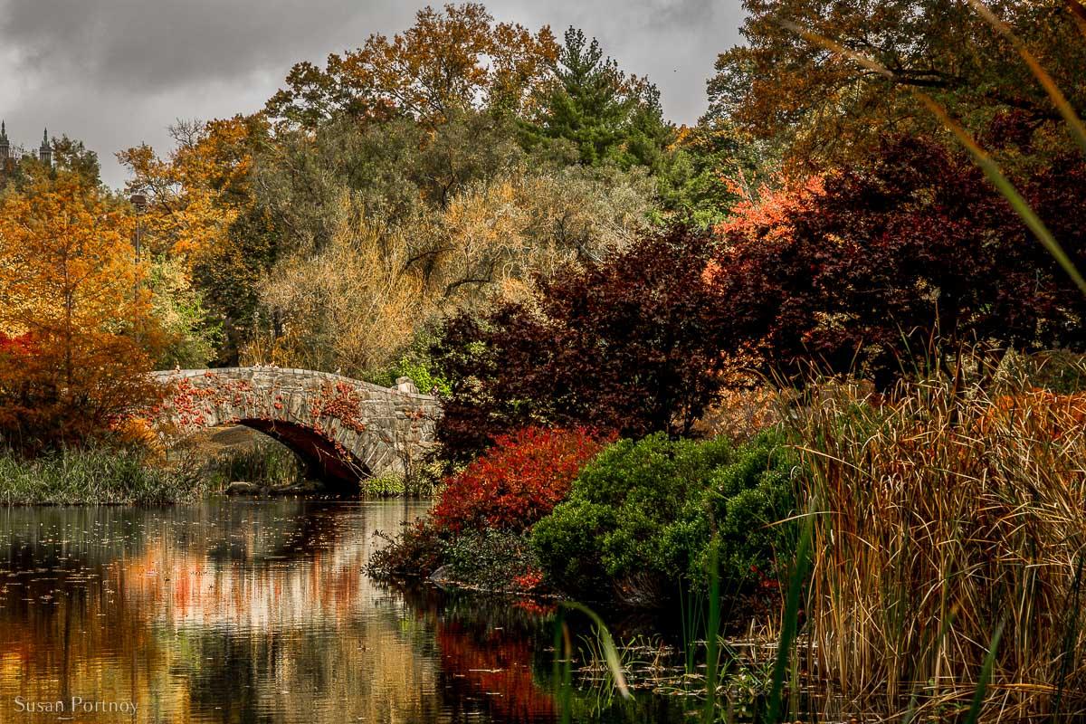 Central Park's Gapstow bridge in autumn