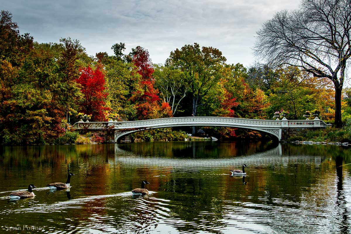 Facing the Bow Bridge from the west side path across The Lake in Central Park