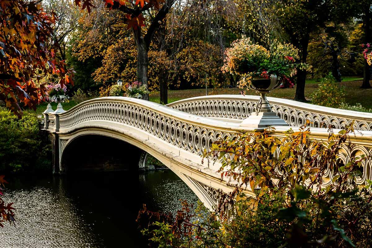 Bow Bridge facing southeast in Autumn