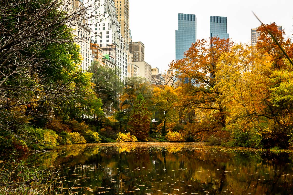 The Pond Facing west toward the CNN towers —A great spot to see foliage in Central Park in Autumn