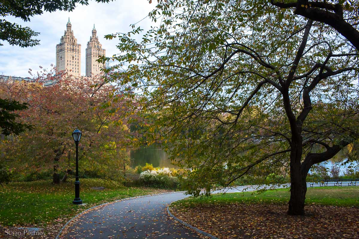 Walkway near Cherry Hill in Central Park