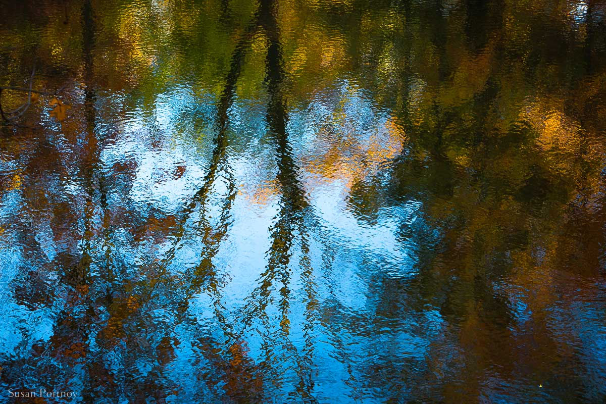 Colorful reflections of fall leaves in a pond in Central Park in Fall
