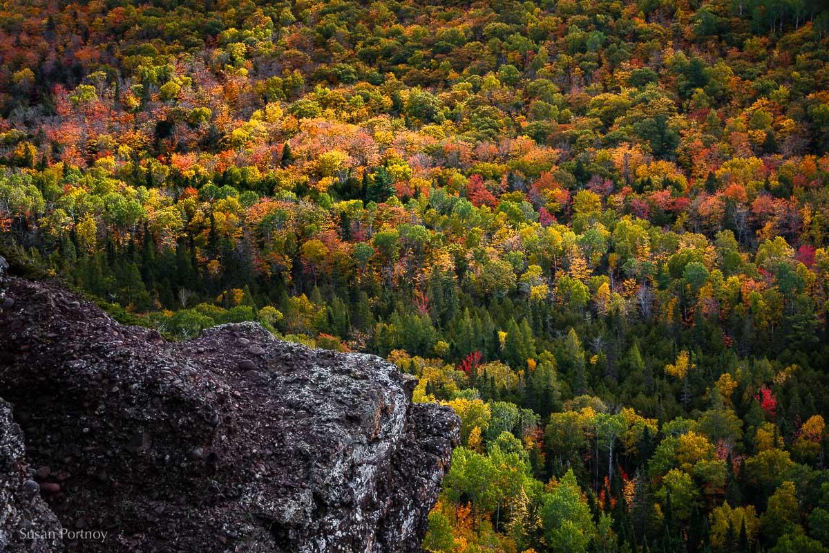View from the Brockway Mountain Overlook