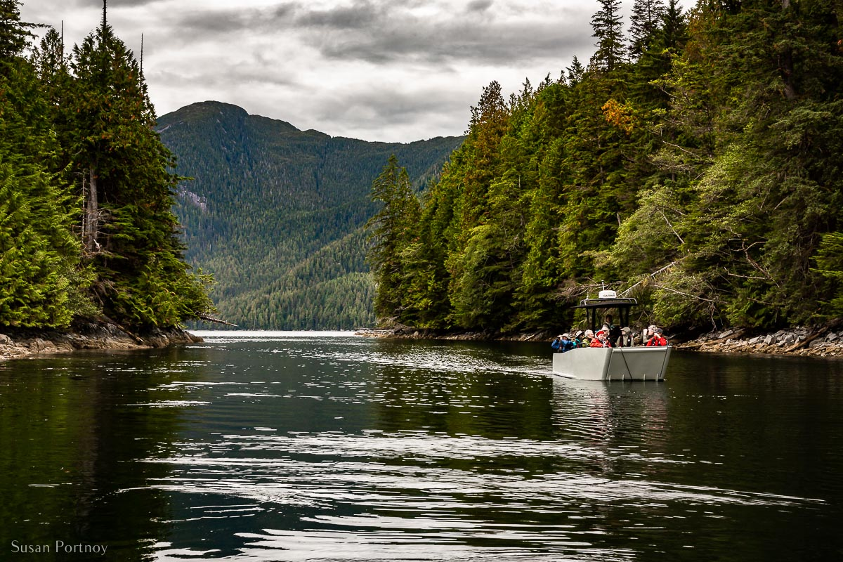 Guests exploring the Great Bear Rainforest in a tender from the Cascadia