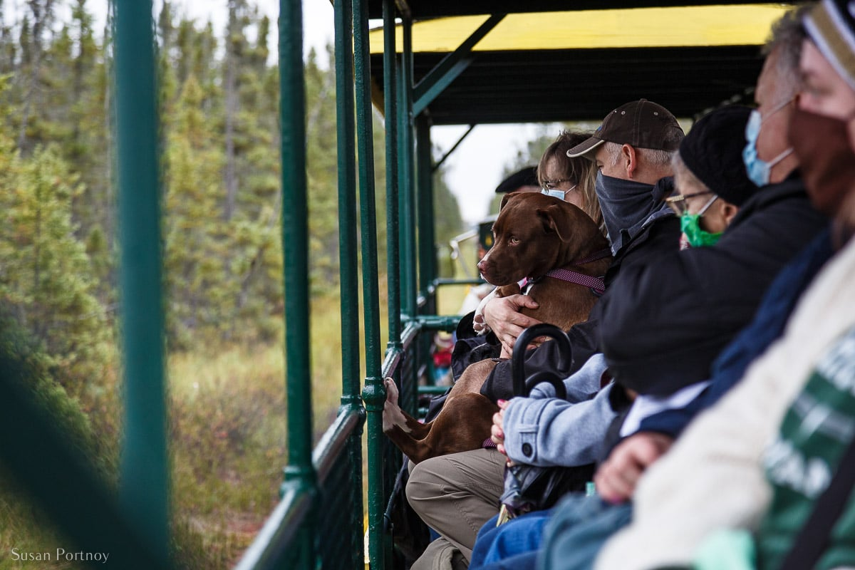 On the Trolley on the way to the Tahquamenon Falls  River