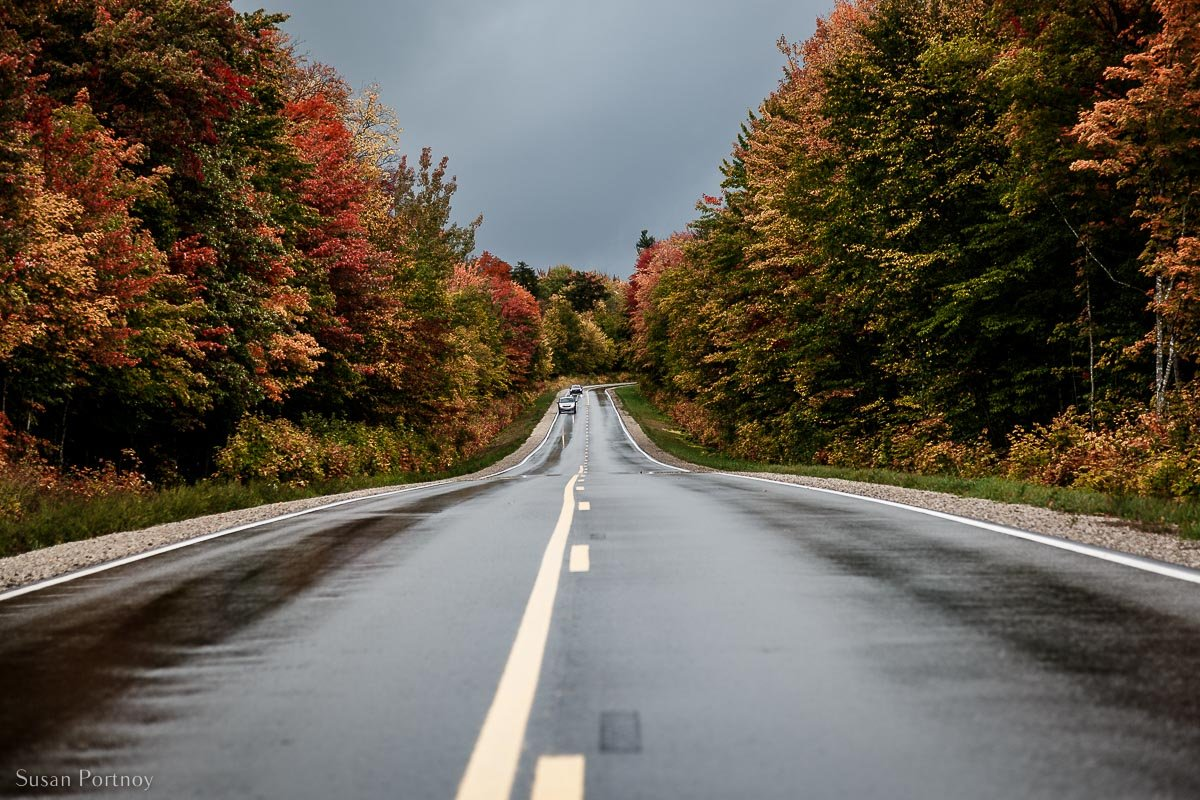 M-28 highway in MIchigan with trees covered in beautiful fall foliage at their peak. A very special road trip
