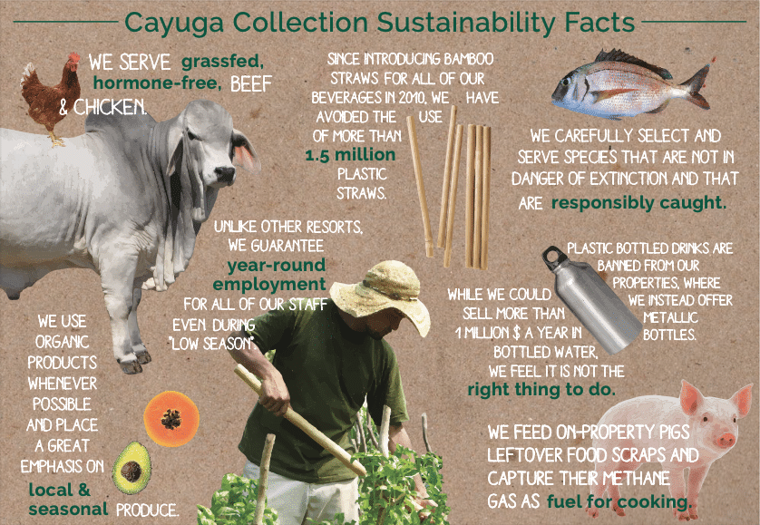 Cayuga Collection Sustainability Facts