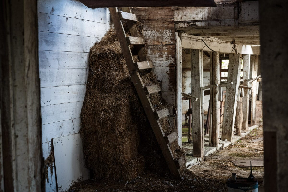 Escanaba abandoned barn
